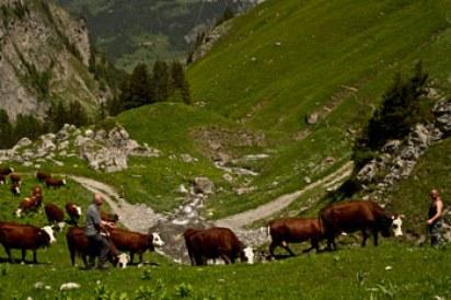 Aravis-alpes-escapade-topo-randonnée-famille-enfant-guide