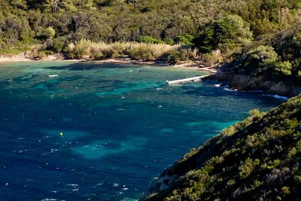 plage-sur-île-Port-Cros.