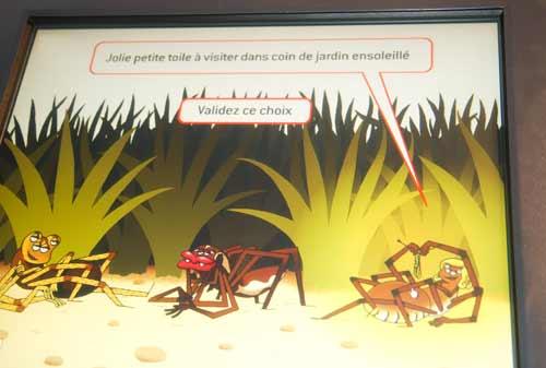 araignée-museum-grenoble