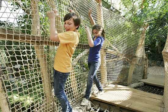 activités-nature-enfant-accrobranche-center-parcs