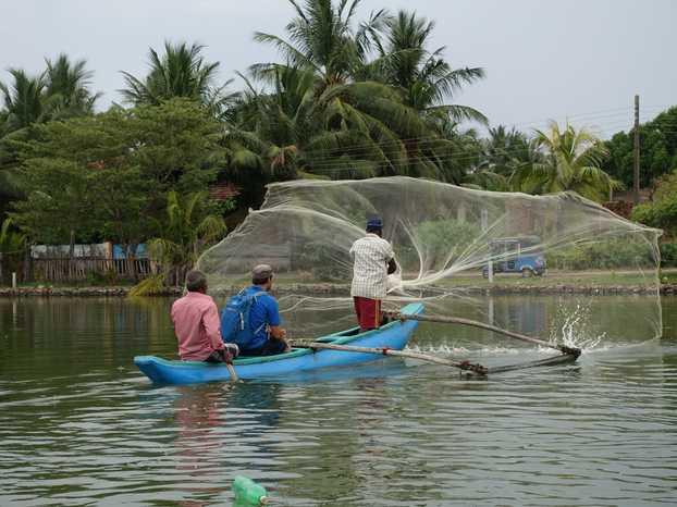 sri-lanka-peche-traditionnelle avec filet