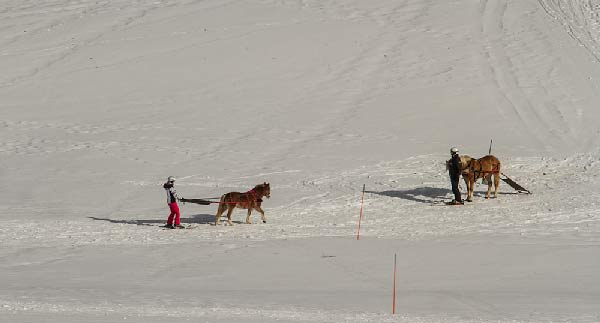 ski-horse-station-du-semnoz-haute-savoie