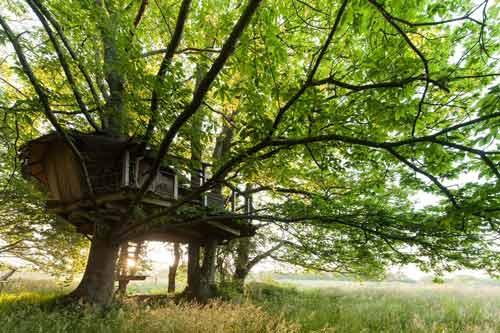 cabane-dans-les-arbres-Bretagne