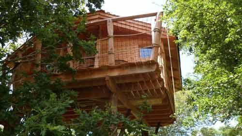 cabane-dans-les-arbres-bretagne-en-famille