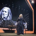 There Was Yet Another Engagement at an Adele Concert
