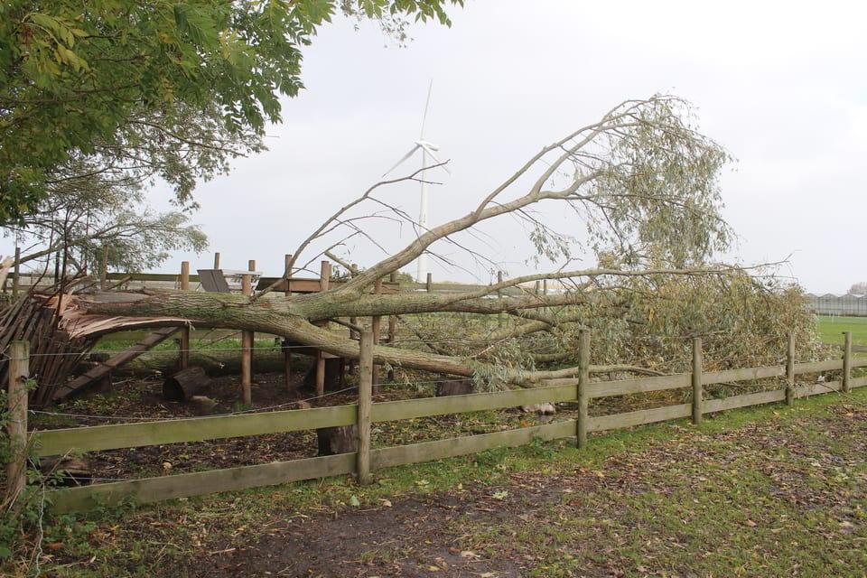 Storm Hoeve Engelenburgh