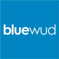 Bluewud Recruitment 2021
