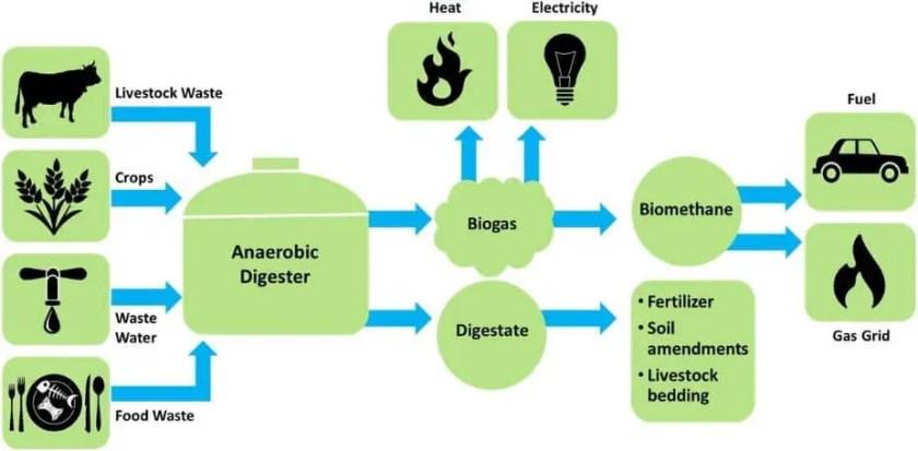 Biogas anaerobic Prosses