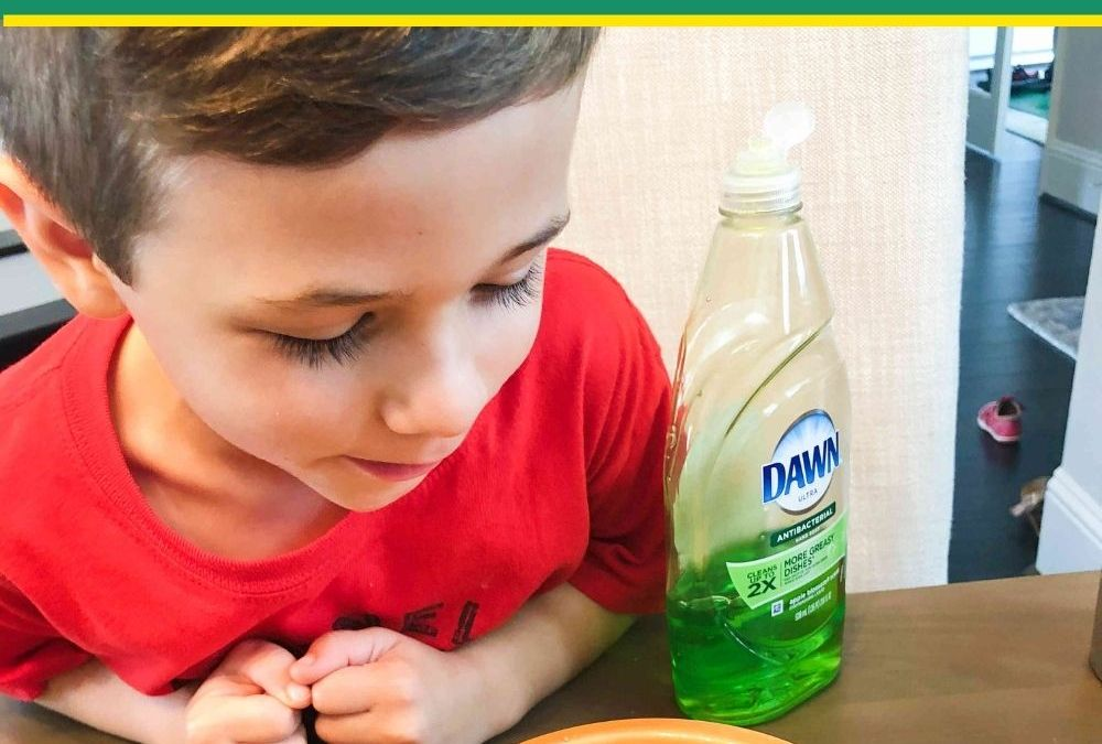 Learn How Soap Repels Germs | STEAM Activity for Kids