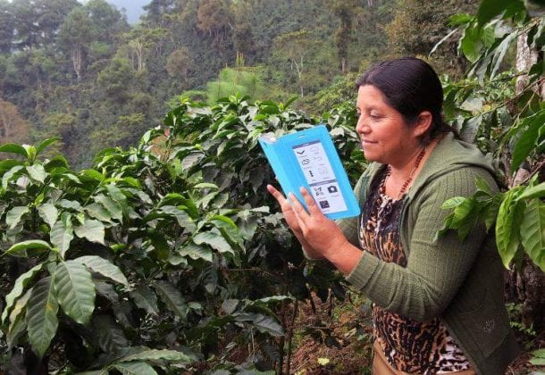 Learn vocabulary, terms, and more with flashcards, games, and other study tools. Rainforest Alliance Farmer Training App Engineering For Change