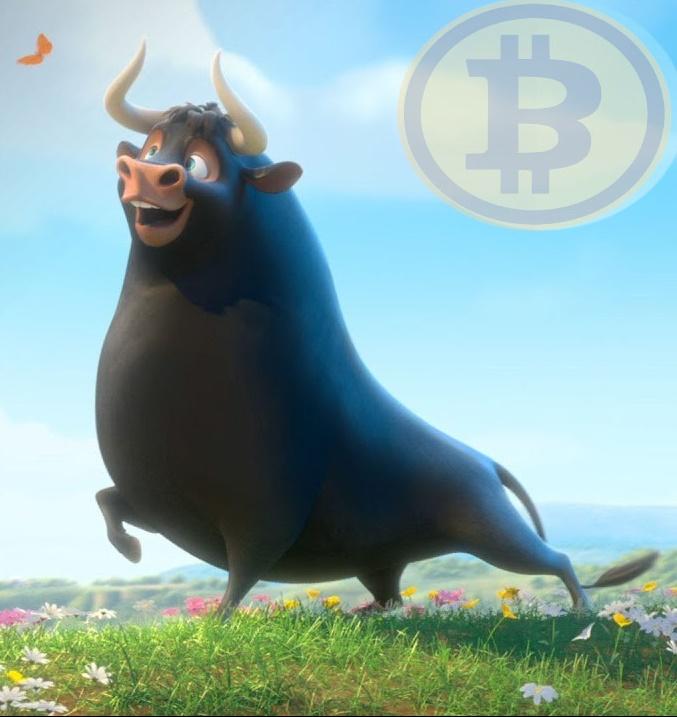 Ya Merkez Bankaları Bitcoin depolamaya başlarsa? Sonrası çılgın boğa sezonu