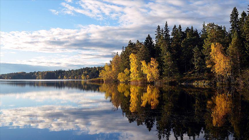 AB'nin yüzde 43'ü ormanlık alandan oluşuyor