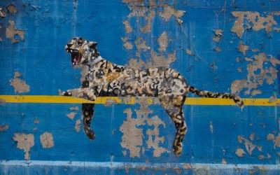 Banksy und der Hype um seine Werke