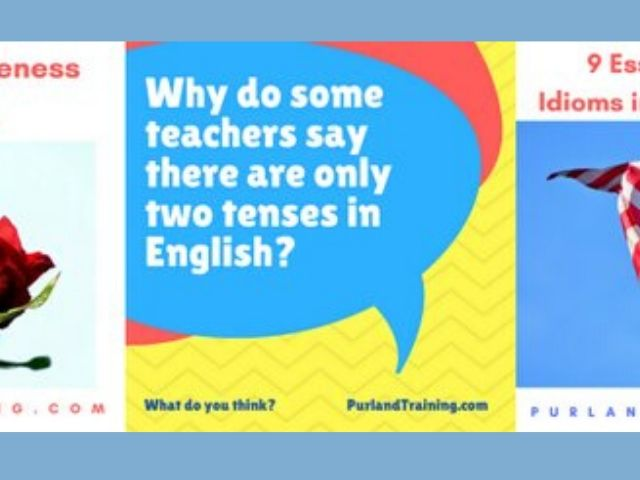 Matt Purland - Purland Training - Online English lessons