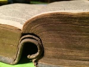 book-515081_1280