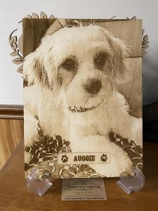 Pet Photo on Wood Plaque - Paw Prints