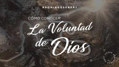 Photo of Cómo Conocer La Voluntad De Dios – Apóstol Guillermo Maldonado