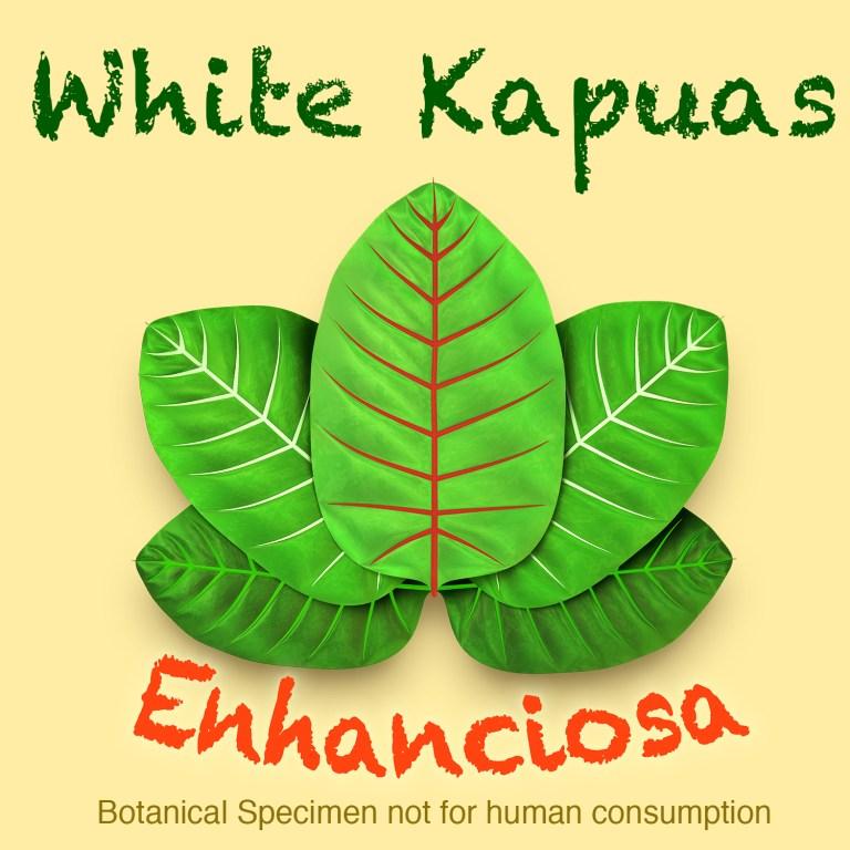 Split Kilogram Kratom Leaf Powder