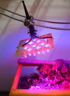 Il pannello di LED autocostruito in funzione