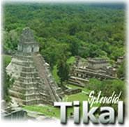 Splendid Tikal Full Day Tour, Guatemala
