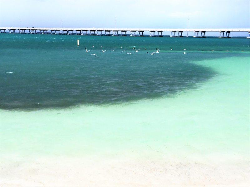 Bahia Honda State Park - Foto: Enjoy Miami