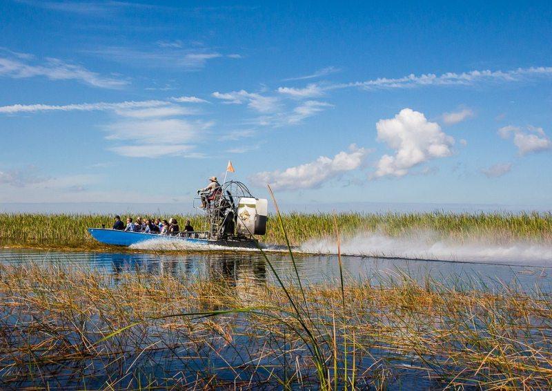 The Everglades por John Cook