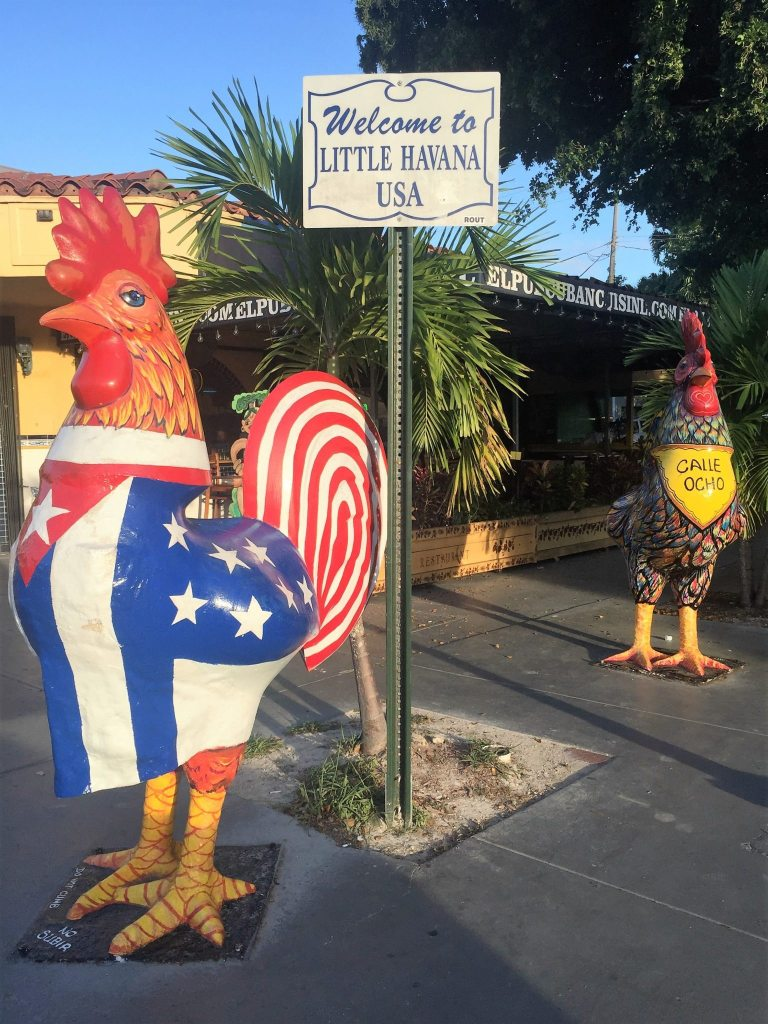 Little Havana - Galos da Calle 8
