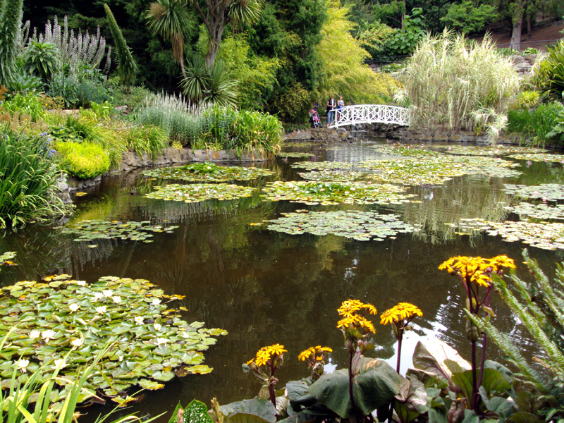The Tasmanian Royal Botanic Gardens are small but special, and include an Antarctic exhibit