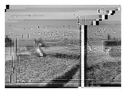 glitch_Adams_IC_03