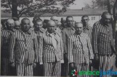 Enlace Judio_Conmemoracion holocausto en el fiesta americana_053