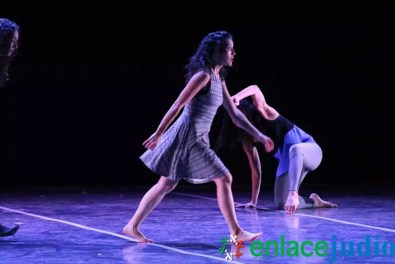 Enlace Judio_Aviv2015_134