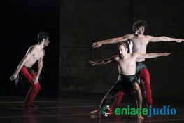 Festival-Inter-de-Danza-Contemporanea-51