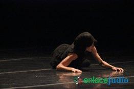 Festival-Inter-de-Danza-Contemporanea-9