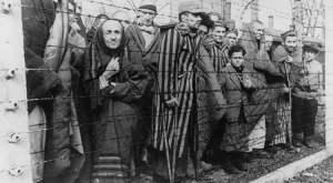 Distintas muertes que sufrieron las victimas del holocausto