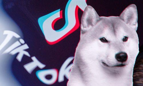 Reto viral en TikTok detona compra de criptomoneda Dogecoin