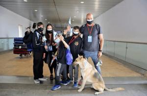 Ante la crisis provocada por la pandedia del coronavirus, israelíes en el extranjero estan buscando casas para regresar a vivir a Israel