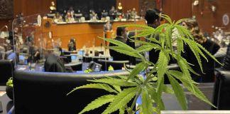 pleno del senado mexicano durante la aprobación de la despenalización de la marihuana