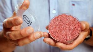 Aleph Farms y el Grupo de la Industria Alimentaria de Mitsubishi Corporation firmaron un acuerdo para llevar carne cultivada israelí a la mesa japonesa