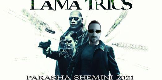 Parasha semanal: Shemini 2021: LAMA TRICS.