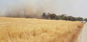 Incendio en el sur de Israel causado por globos lanzados desde Gaza