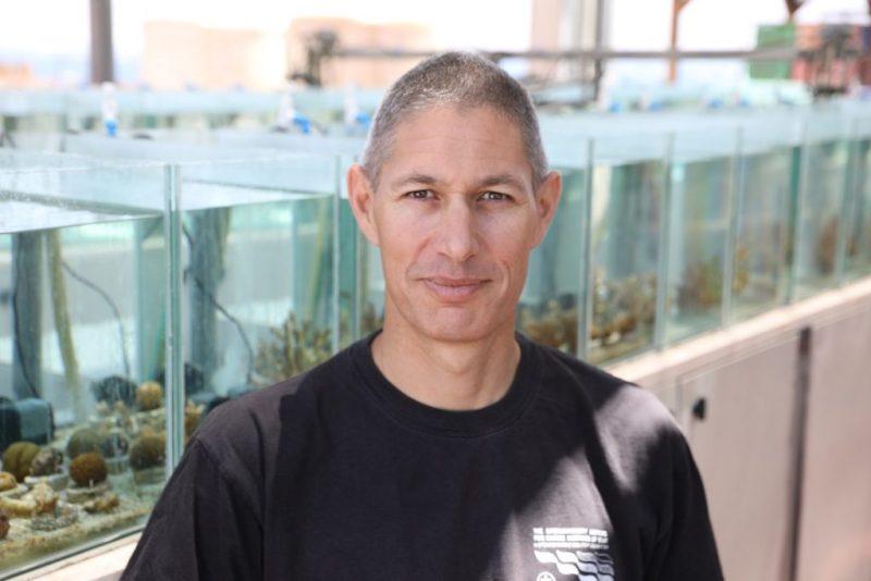 Maoz Fine del Instituto Interuniversitario de Ciencias Marinas en Eilat