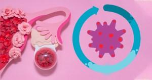 virus causante del Covid-19 y ciclos menstruales