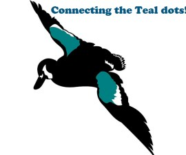 teal-for-teal-international-banner2-1024
