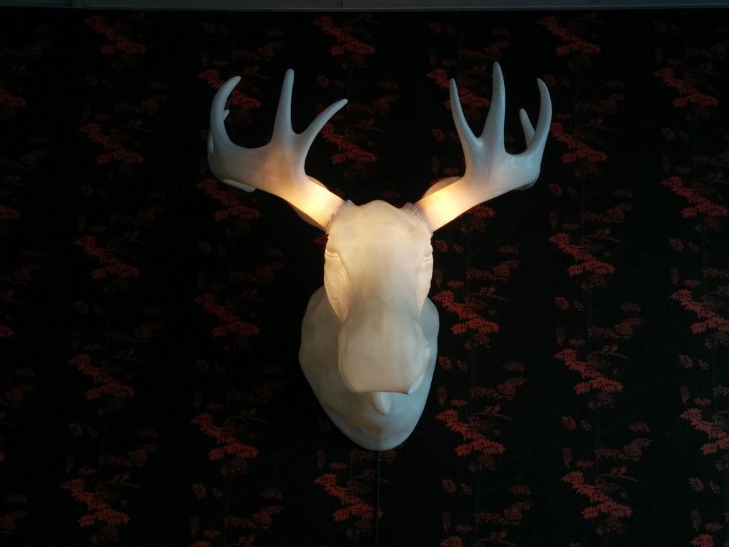 Moose head