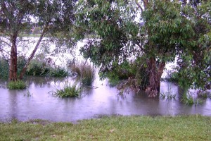Berwick Springs Flooding