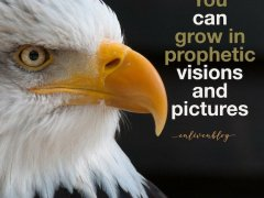 You can grow in prophetic visions and pictures