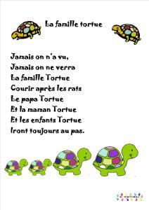 tortue