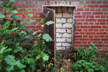 Reseña de Coraline (novela gráfica): puerta tapiada
