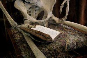 Reseña de Cuando el amor despierta: esqueleto con libro