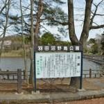 白鳥の飛来で有名な羽田沼(はんだぬま)まで4km(周辺)